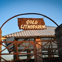 Cole Lithoparium Hot House